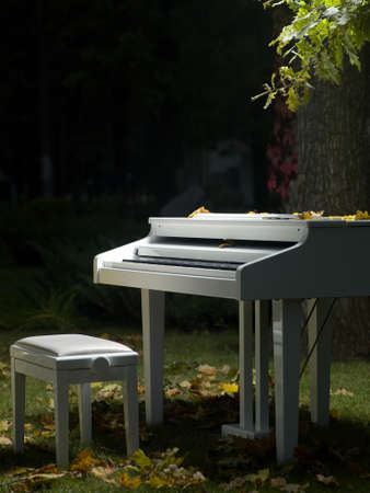 white grand piano stands in the grass near a tree Stock Photo
