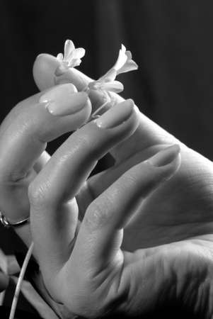 hands with a flower on the black photo