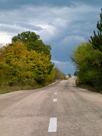 the road on a hillside with trees photo