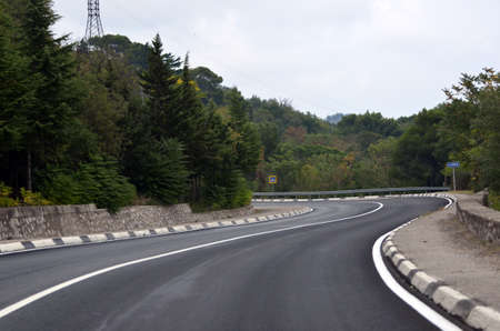 asphalt road near the forest at the turn