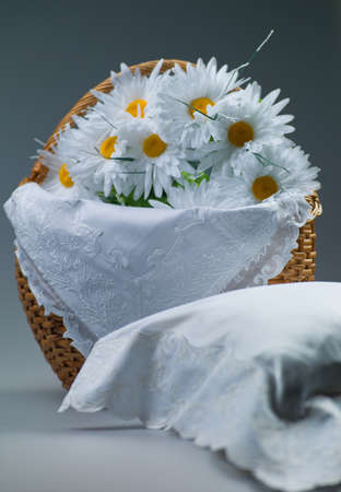 Photo basket with daisies in the studio on a white background Stock Photo - 17610362