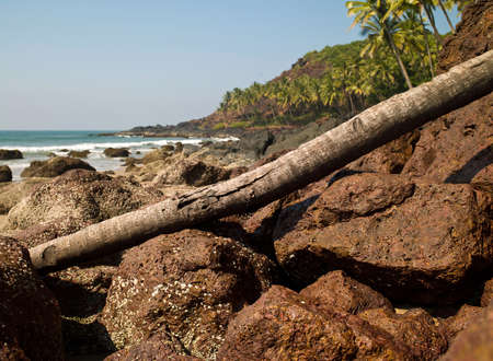 landscape photography of nature to Goa in India Stock Photo - 18257067