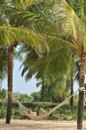 landscape photography of nature to Goa in India Stock Photo - 18237405