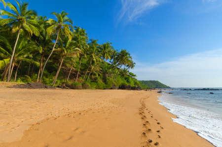 beautiful landscape beach in Goa in India photo