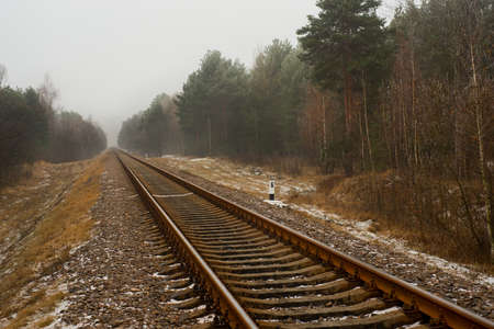 forest railway: Railway in the winter forest