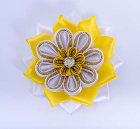 hair clip: Colored hair clip on a white background