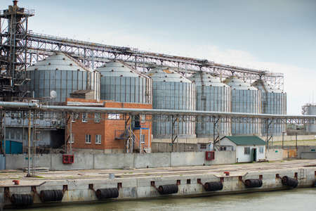 processed grains: Larger feed industry by the sea, where it is processed grains