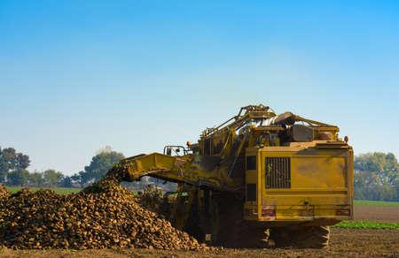 Maschinenreinigung von Zuckerrüben auf dem Feld