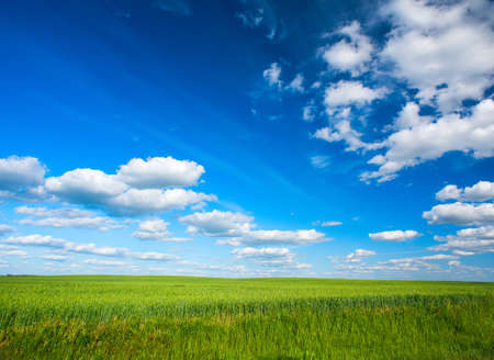The sky with clouds and green field