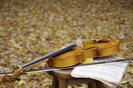 violin and musical sheet in fall season