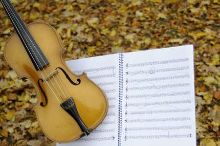 violin and musical sheet photo