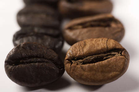 different coffee beans Stock Photo - 13296082
