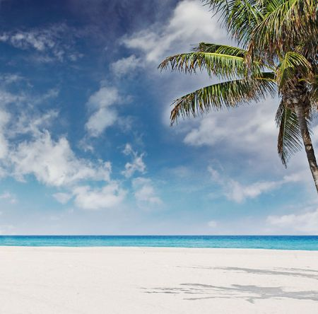 Beautiful beach in Miami Florida on a sunny day photo