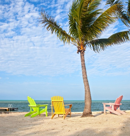 florida beach: Summer scene with colorful lounge chairs on a tropical beach in Florida with palm tree and blue sky