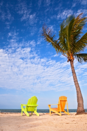 Summer scene with colorful lounge chairs on a tropical beach in Florida with palm tree and blue sky photo