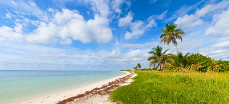 Summer at a tropical paradise in Florida Keys, USA with palm trees, blue sky, clouds and crystal clear water of Atlantic Ocean photo