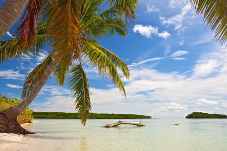 llave de sol: Las palmeras, mar y cielo azul en una playa tropical en Cayos de Florida cerca de famoso destino turístico de Cayo Hueso