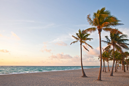 florida beach: Miami Beach, Florida colorful summer sunrise or sunset with palm trees, beautiful sky and ocean Stock Photo