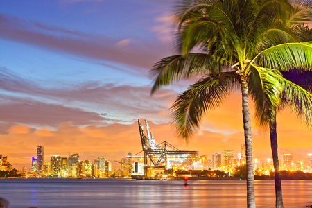 city of miami: Beautiful sunset over  Downtown and the Port of Miami, beautiful colorful sunset skyline panorama with silhouettes of Palm trees