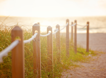 Path on the sand going to the ocean in Miami Beach Florida at sunrise or sunset, beautiful nature landscape, retro instagram filter and soft focus for vintage looks