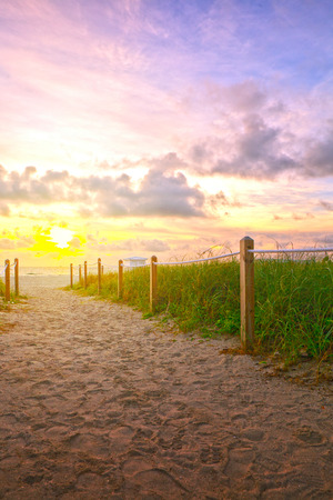 sea oats: Path on the sand going to the ocean in Miami Beach Florida at sunrise or sunset, beautiful nature landscape, retro  filter for vintage looks