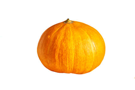 Raw whole orange pumpkin on a white isolated background