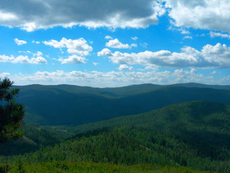 The aerial view of the dense Siberian forest, roadless taiga