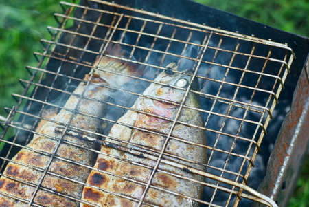 Grilling fish on campfire close up