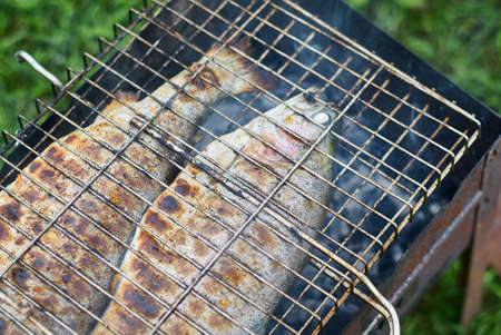 Fried fish on the grill close up Stockfoto