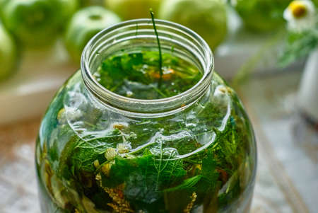 Medicinal infusion of boiling water and freshly picked leaves and herbs in glass jar 스톡 콘텐츠 - 97240342