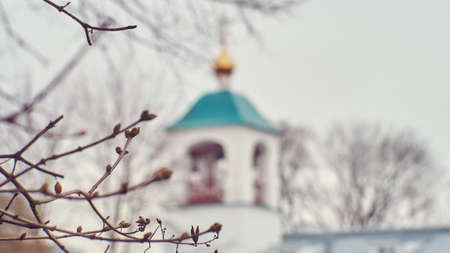 Spring tree branches with swollen buds on the blur background of bell tower