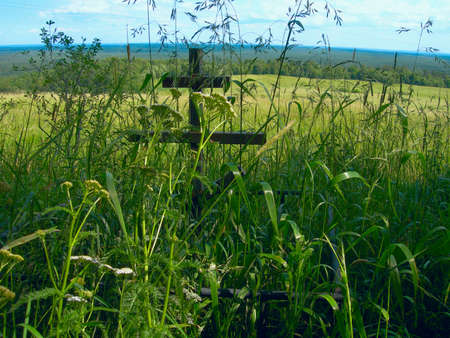 Old grave with wooden cross in field, overgrown grass