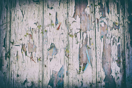 Vintage wood background with faded and cracked paint, dry flowers, vignette