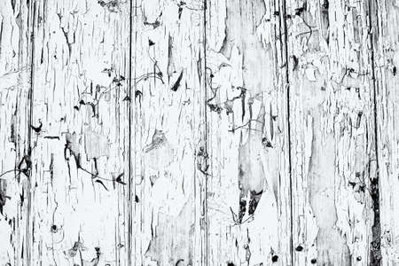 Wood board with faded and cracked paint, dry flowers, vintage background monochrome