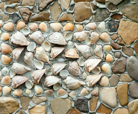 Lined with rocks and seashells wall background close up Stock Photo