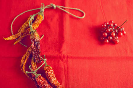 Dry hot chilli peppers and berries viburnum on bright red fabric background close-up 写真素材