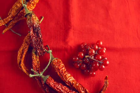 Dry hot chilli peppers and berries viburnum on bright red fabric background close-up 스톡 콘텐츠