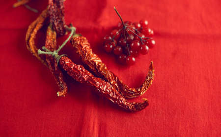 Dry hot chilli peppers and berries viburnum on bright red fabric background close-up Stockfoto