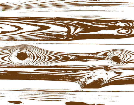 Texture wood vector illustration, vector wood background