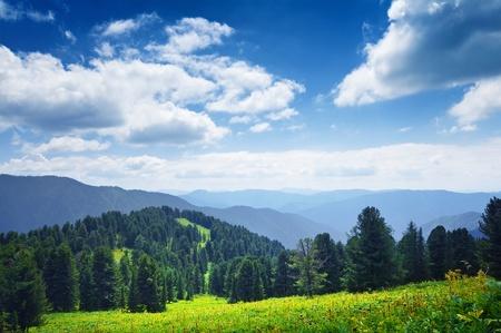 Beautiful mountain landscape. Fields of Altai, Russia