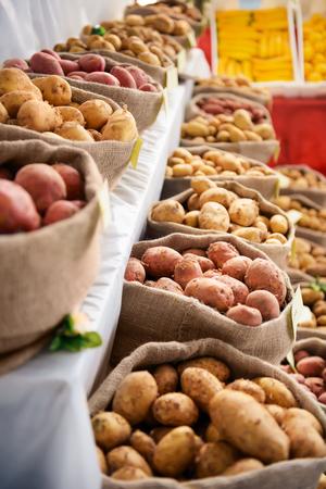 fingerling: Harvest raw potatoes in burlap sack in market
