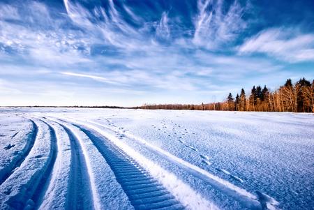 trail: Tracks on snow