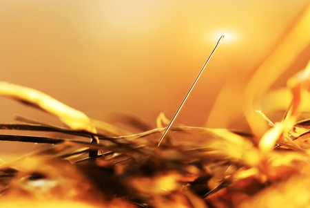 brilliant: Needle in a haystack close-up Stock Photo