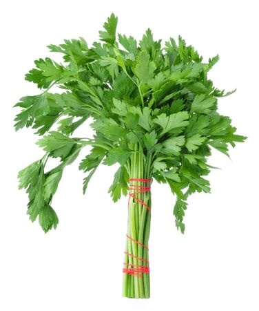 fascicle: Bunch of parsley isolated on a white background