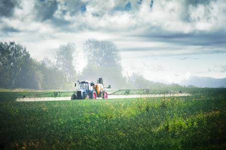 Tractor fertilizes crops in the field
