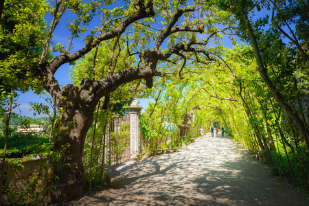 garden styles: Boboli Gardens, Florence, Italy Stock Photo