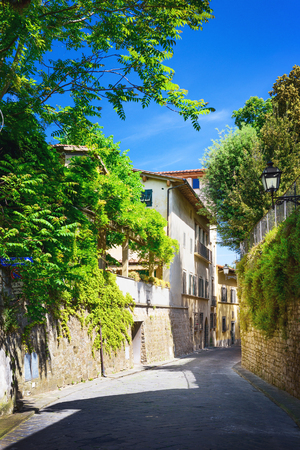 garden styles: Old street in Boboli Gardens, Florence, Italy