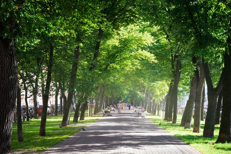 banc de parc: Vert parc de la ville dans la journée d'été ensoleillée Banque d'images