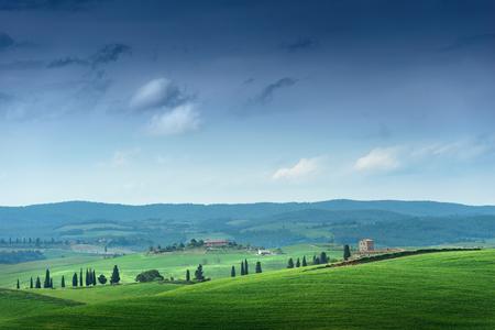 fields: Green field and blue sky. Italy, Tuscany Stock Photo