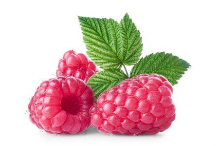 fresh leaf: Fresh raspberry with green leaf on white background